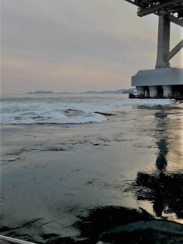生きている海