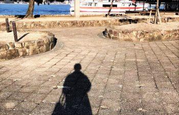 早朝の宮島