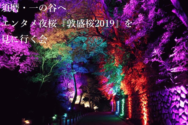 須磨 敦盛桜2019